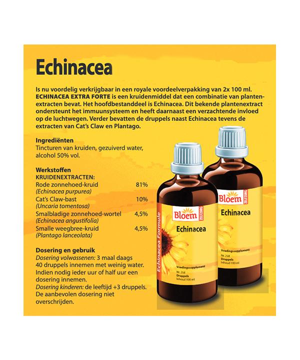 DU258G Echinacea back